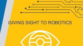 Giving Sight to Robotics